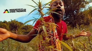 Lutan Fyah - Sweet Trichomes [Official Video 2016]