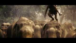Tony Jaa Runs on Elephants