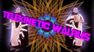 Telekinetic Walrus - Mantra - Official Music Video