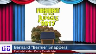 Turtle's Speech | President of the Jungle 2017 | MMNN Newsbreak | Many Miniatures Theater