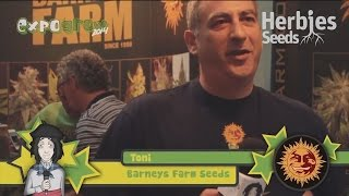 Herbie Interviews Barneys Farm Seeds