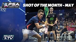 Squash: Shot of the Month - May 2018