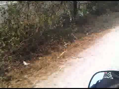 Dharan To Biratnaghar 2