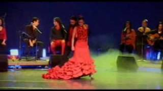 Dance FLAMENCO Lyon Danse Lesson Cours Al Andalus Baile Gitano Gitan Couple Duo Danse