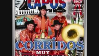 Los Dos Gallos Pesados- Los Capos De Mexico Cancion Nueva