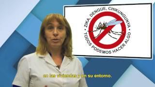 Prevención: Dengue, Zika y Chikungunya
