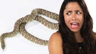 People Face Their Fear Of Snakes