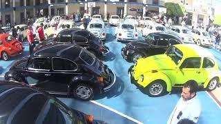 VW Treffen 2018 5 Ciudad de Mexico Instituto Mexico Primaria ANCVM Fierros Viejos VW Club Toluca