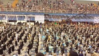 Águia de Ouro 2017 - Desfile Oficial