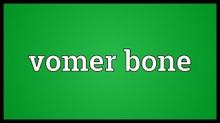Vomer bone Meaning