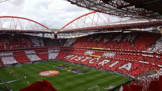 Hino do Benfica 🦅 36