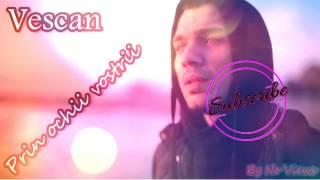 Vescan-Evolutie(song)