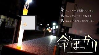 【ヲタ芸】命ばっかり / Flower・結月ゆかり【神崎ユウ】