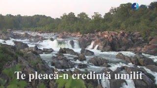 Luiza Spiridon & Vili Dulă - O suflete stai liniştit [Official audio]