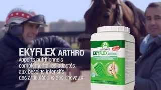 Campagne TV Laboratoires Audevard 2014 - Ekyflex Arthro