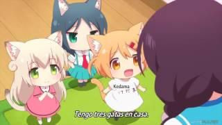 Nyanko Days - Cap 1 Sub Español