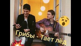 Грибы - Тает Лёд cover (TRAVINSKY cover)