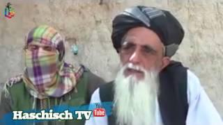 Afghan Hashish King width=