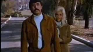 Nancy Sinatra & Lee Hazlewood-Did You Ever?