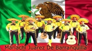 Mariachi Juarez de Barranquilla (cover) Mujeres Divinas Vicente Fernandez