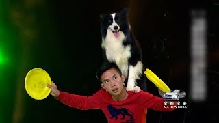 Dog and owner wow Chinese talent show with frisbee tricks