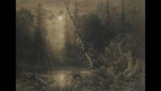 Dark Forest - ambient music by Marcelo Monteiro