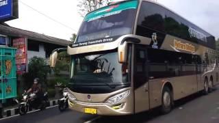 [HD] Bus SDD Putera Mulya Bonus Telolet & Konvoi Bus Wisata
