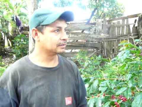 Nicaragua, Estelí Coffee Plantation Tour