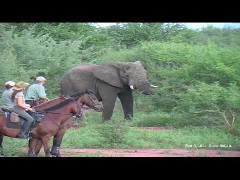 Lucinda Green on safari at Wait a Little