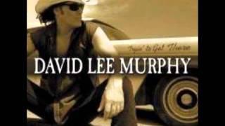 Party Crowed - David Lee Murphy