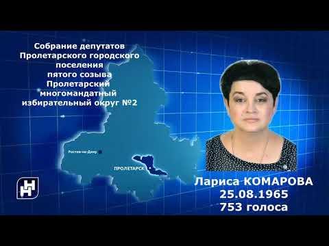 Выборы депутатов Собрания депутатов Пролетарского городского поселения