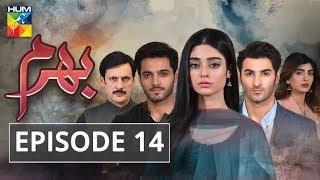 Bharam Episode #14 HUM TV Drama 16 April 2019