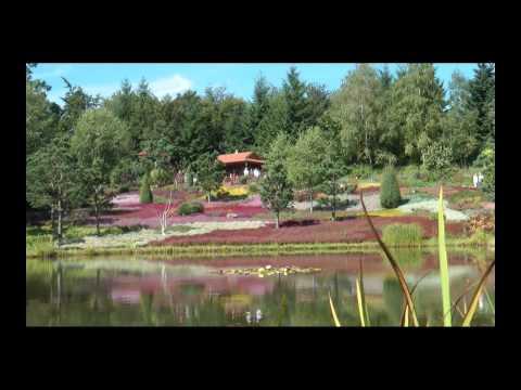 Nepal Garten Wiesent