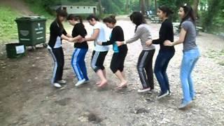 Penguen Dansı  10-D