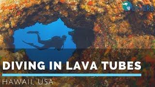 Diving in lava tubes, Kohala Coast, Big Island, Hawaii