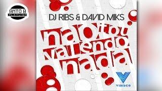 DJ Ribs Ft. David Miks - Nao To Valendo Nada ♪ (Verao 2014)