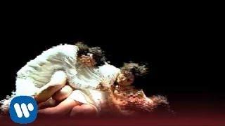 Barricada - Petalos (videoclip oficial)