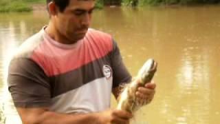 toninho ó pescador