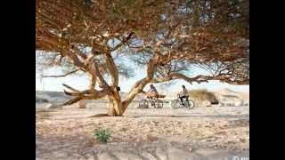 צימר נוף צוקים - צימרים  בנוף צוקים שבערבה | www.zimmer.co.il