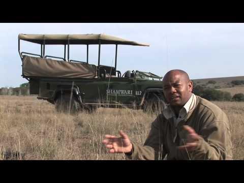 Abel Gouza: Ranger at Shamwari Game Reserve