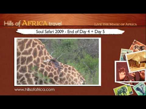 Soul Safari 2009 with Ainslie MacLeod – End of Day 4 + Day 5