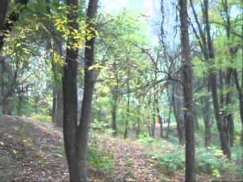 28 10 2012 Zaporizhzhya Ukraine