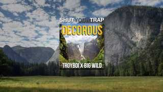 TroyBoi & Big Wild - Decorous (Original Mix)