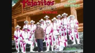 Los Pajaritos de Tacupa Michoacan-Enseñame A Olvidar