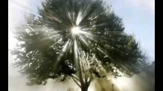Salmo-004-Oração da noite-narrado por Cid Moreira
