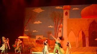 Aladim - Carolemos Dançarte