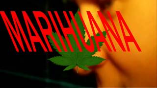 Himno Mundial De La Marihuana vs Animals (rmx)Dvj Friz - DEMO