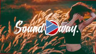 DVBBS & CMC$ - Not Going Home ft. Gia Koka (CRED1X Remix)