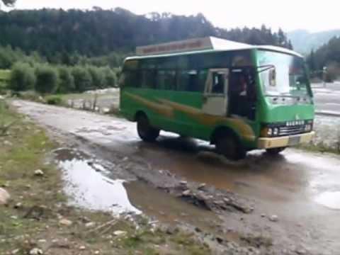 Annapurna Buses