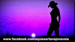Ela é demais -  Cesar menotti e Fabiano -  #modão #antigas #classicas #aquiésertanejonaveia